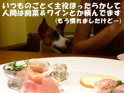 ★前菜.jpg