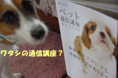 ワタシの通信講座.jpg