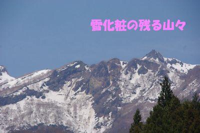2雪化粧.jpg